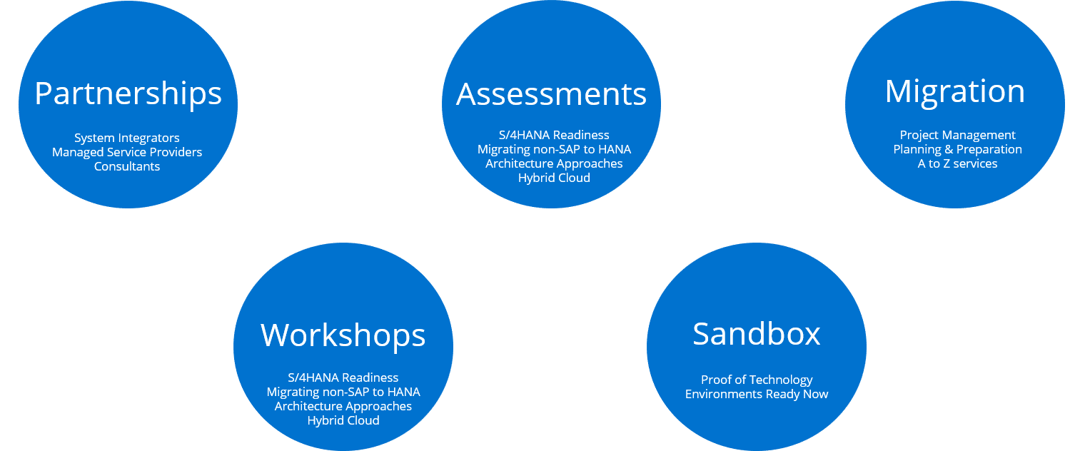 SAP HANA Migration Services - ERP Services - SAP HANA Assessments, Workshops, Migration, Partnerships, Sandbox